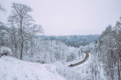 Zimna zima przy Latvia Biała zimna pogoda i natura Fotografia Royalty Free