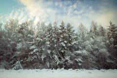 Zimna zima w Rosja Obrazy Stock