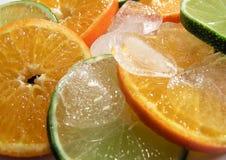 zimne owoców Zdjęcie Royalty Free
