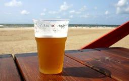 zimne piwo zdjęcie royalty free