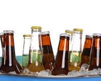 zimne piwo Obraz Stock