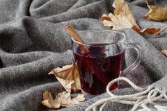 Zimnego czasu alkoholu gorący napój, rozmyślający wino obrazy royalty free