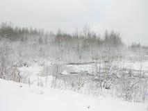 Zimny śnieżny jezioro Zdjęcia Royalty Free