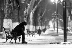 Zimny i samotnie Fotografia Stock