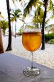 Zimny koktajl przy Plażowym barem - Isla Mujeres Playa Norte zdjęcia royalty free
