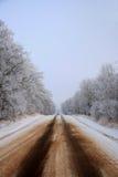 zimny kraj Obraz Royalty Free