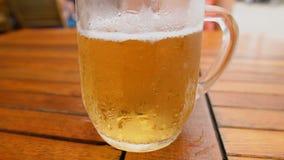 Zimny Lekki piwo w szkle zdjęcie wideo