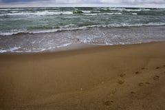 zimny morze Obrazy Royalty Free