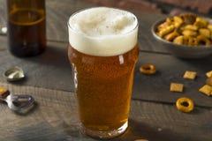 Zimny Odświeżający Amerykański Lager Crafter piwo Obraz Stock