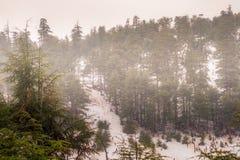 Zimny piękny śnieżny dzień w lodzie w zimie obrazy royalty free