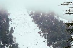 Zimny piękny śnieżny dzień w lodzie w zimie zdjęcie royalty free