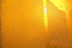 Zimny piwo w kubku Obrazy Royalty Free