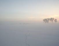 Zimny pył Zdjęcia Stock