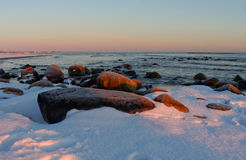 Zimny ranek Zdjęcia Royalty Free