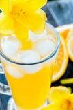 Zimny sok pomarańczowy z lodem, dekorującym z żółtym leluja kwiatu zakończeniem Zdjęcie Royalty Free