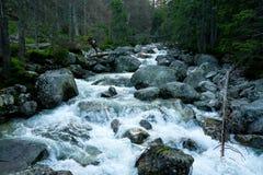 Zimny strumień Obraz Royalty Free