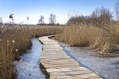 Zimny zima dzień, drewniana ścieżka w Uckermark fotografia stock