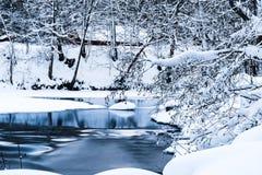 Zimny zima strumień w Śnieżnych otaczaniach fotografia royalty free