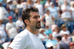 Zimonjic Nenad doubles champion (23) Stock Photos