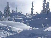 zimowa kraina czarów Zdjęcia Stock