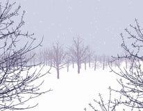 zimowa kraina czarów Obraz Royalty Free