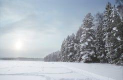 zimowy dzień Zdjęcie Stock