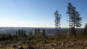 zimowy krajobraz Obraz Stock