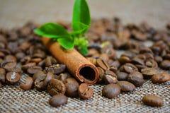 Zimt, Kaffeebohnen und Blumen Stockfotos