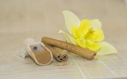 Zimt und wohlriechende Blume des Gelbs Lizenzfreies Stockbild