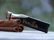 Zimtstangen und Vanille-Extrakt für Weihnachten lizenzfreies stockfoto