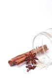 Zimtsteuerknüppel mit Anisstern und weißen Pfeffern Lizenzfreies Stockfoto