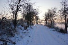 Zimy łąka zdjęcie royalty free