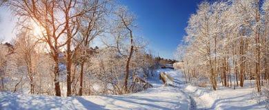 Zimy ścieżka na słonecznym dniu zdjęcia royalty free