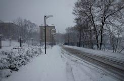 Zimy śnieżna burza w Vladivostok Zdjęcie Royalty Free