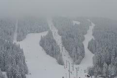 Zimy śnieżny fan obrazy royalty free