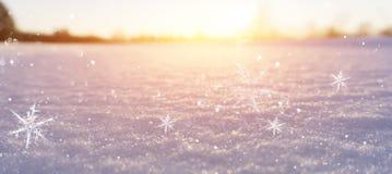 Zimy śnieżny tło, błękitny kolor, płatek śniegu, zimy śnieżny tło, błękitny kolor, płatek śniegu, światło słoneczne, makro- obraz royalty free