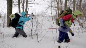 Zimy aktywność: Cztery przyjaciela iść na podwyżce w lesie w zimie, krańcowa wycieczka zbiory
