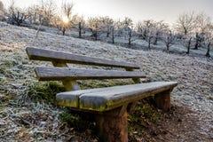 Zimy ławka obrazy stock