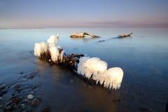 Zimy Bałtycki wybrzeże, lód formy, korzeń, falochron, Kolobrzeg, Polska obraz royalty free