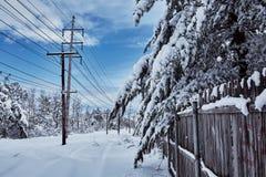 Zimy bajka patrzeje po śnieżyca natury piękna Zdjęcie Stock