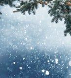Zimy Bożenarodzeniowy tło z jedlinową gałąź i rożkami Obrazy Stock