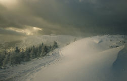 Zimy burza Zdjęcia Royalty Free
