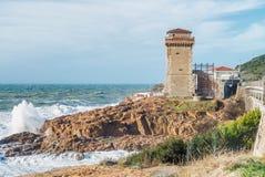 Zimy burza przeciw plaży Fala i wiatr Obraz Royalty Free