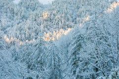 Zimy burza w appalachia Fotografia Stock