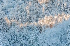 Zimy burza w appalachia Obrazy Royalty Free