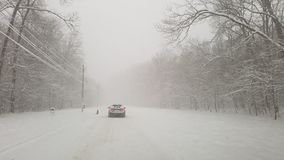 Zimy burza w Ostratu lesie zdjęcia royalty free