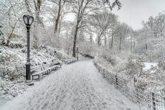 Zimy burzy central park, Miasto Nowy Jork Obraz Royalty Free