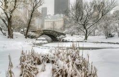 Zimy burzy central park, Miasto Nowy Jork Zdjęcie Royalty Free