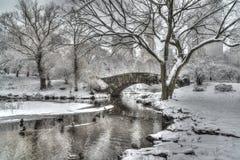 Zimy burzy central park, Miasto Nowy Jork Zdjęcie Stock