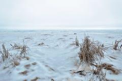 Zimy Desolation przy plażą zdjęcia royalty free